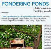 Pondering Ponds Article featured in Backyard Solutions Magazine